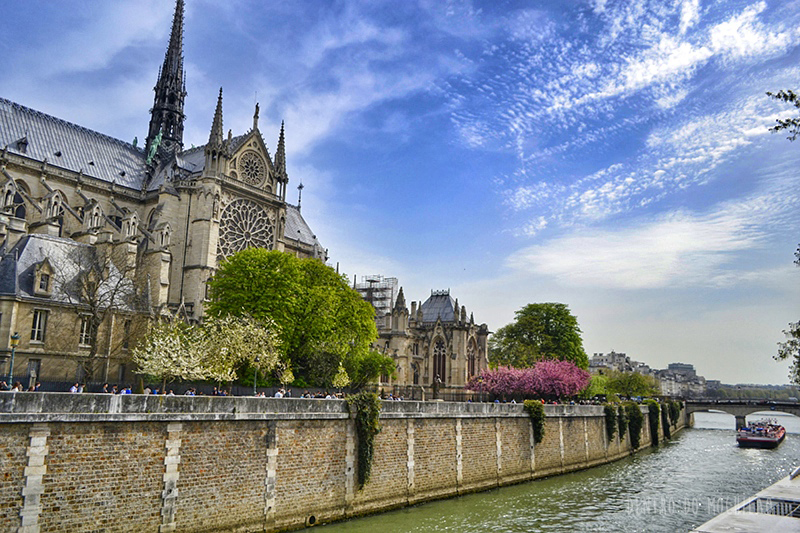 norte-dame-paris